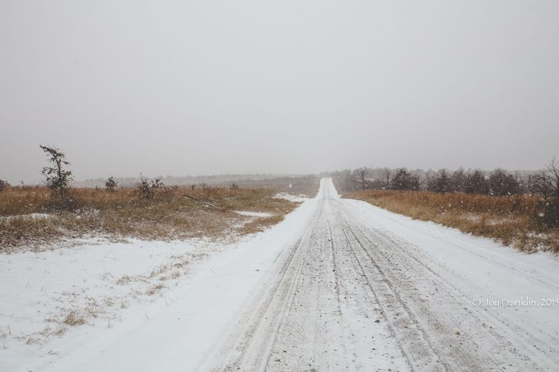 February 27 snow-5920