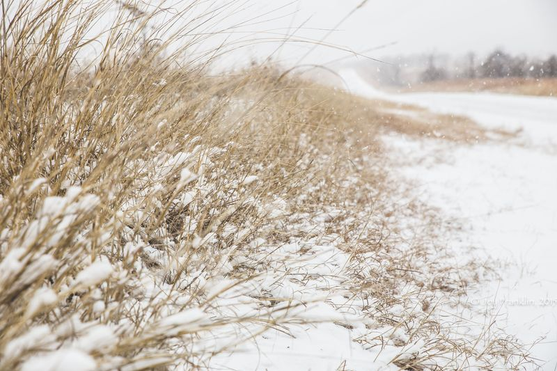 February 27 snow-5924
