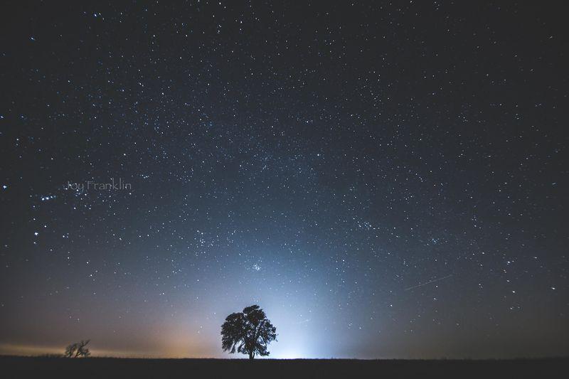 March Stars -7183