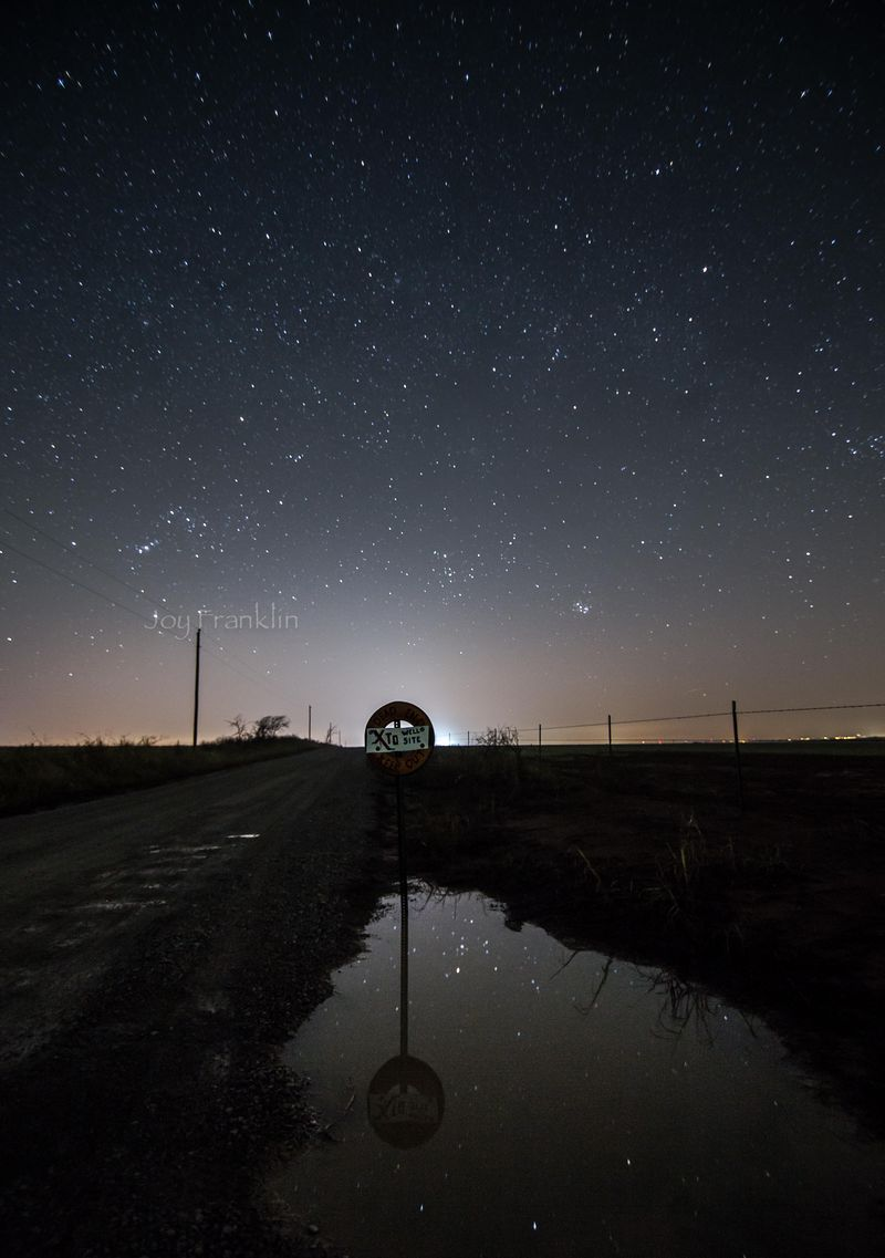 March Stars -7221