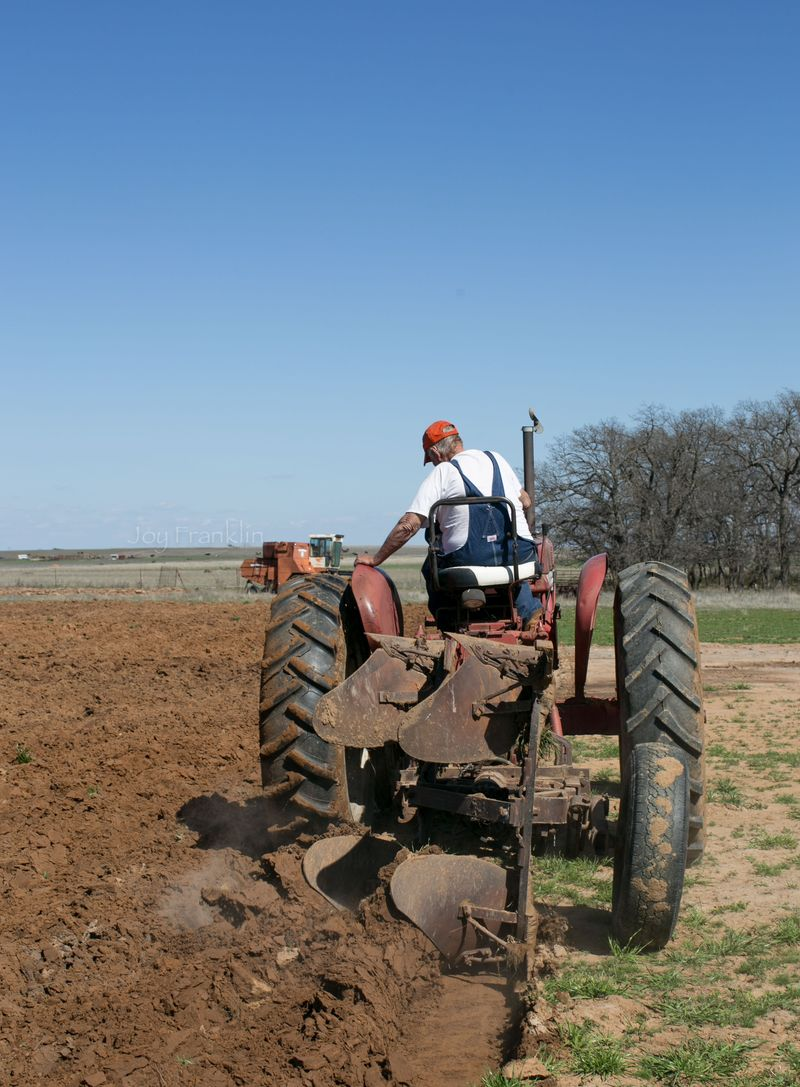 Daddy Farming March 24 2015-8336
