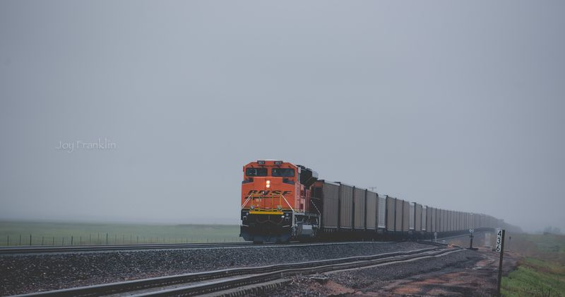 Train near toadstool park -1