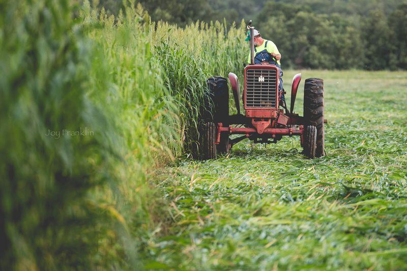 Steve Cutting Hay on the Farm -1