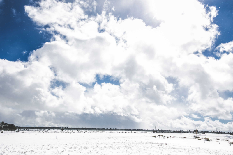 Snow in PineHill NM January 21 2017-1-6