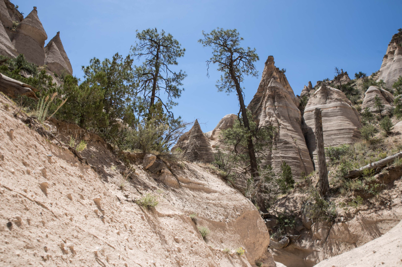 Kasha-Katuwe Tent Rocks National Monument New Mexico-1-8