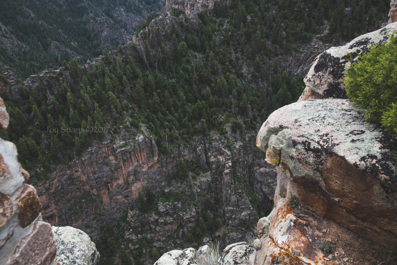 Black Canyon of the Gunnison -1-5