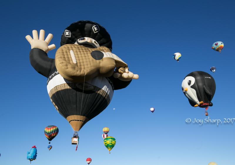 Balloon Fiesta New Mexico Albuquerque-1-17