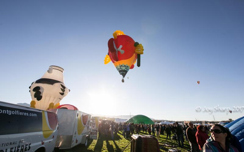 Balloon Fiesta New Mexico Albuquerque-1-13
