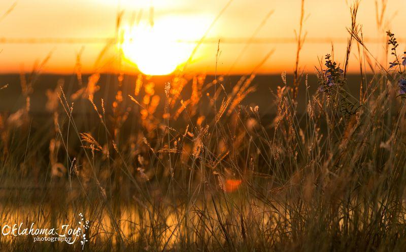 Beautiful Sunset WM-0724