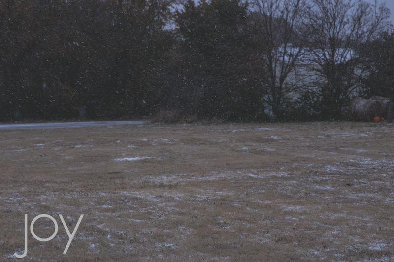 Snow-1611