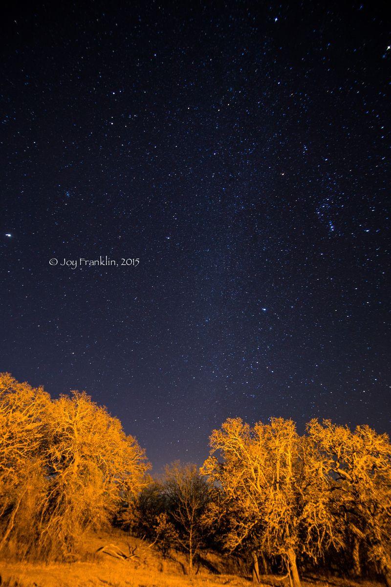 Stars January 18th  (1 of 1)-14
