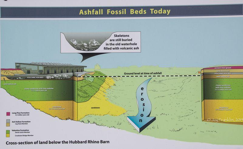 Ashfall State Park in Nebraska -8976