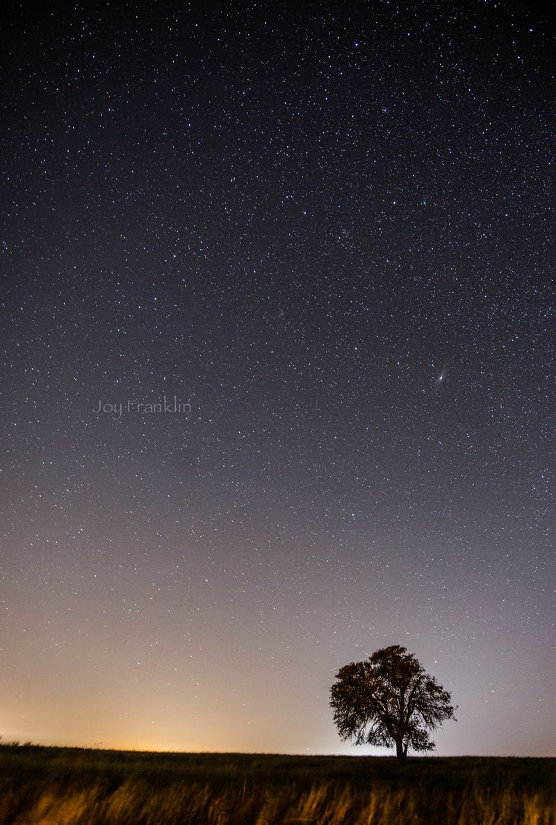 Astrophotography_February_7_2015_JoyFranklin-3193