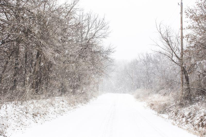 February 27 snow-5855