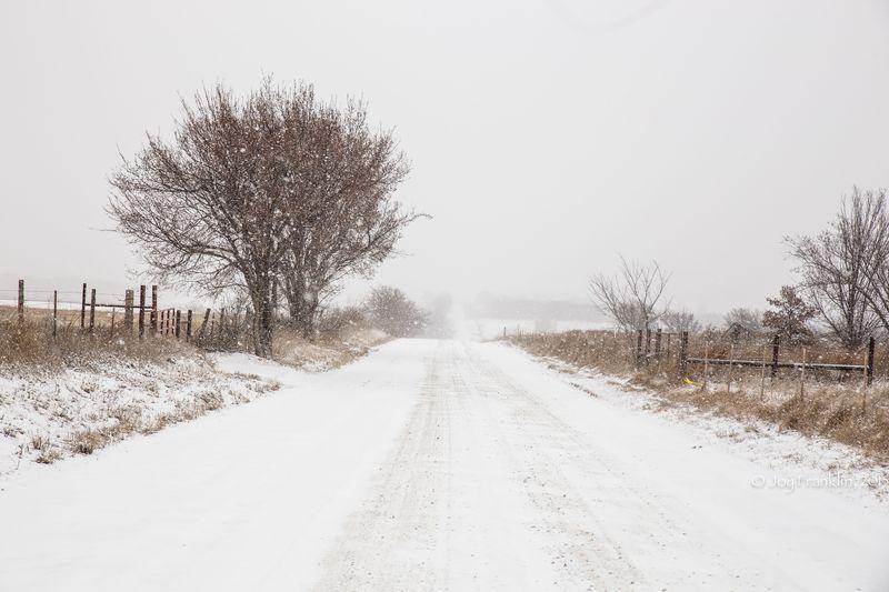 February 27 snow-5913