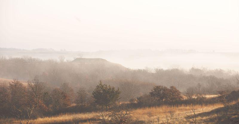 Foggy Morning -7358-2
