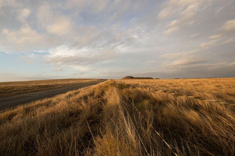 November Landscape-1-7