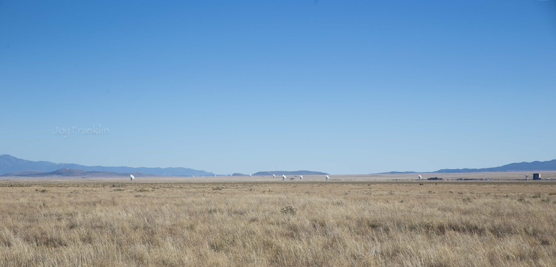 Plains of San Agustin  New Mexico -1