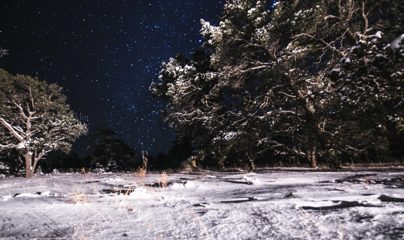 Snow in PineHill NM January 21 2017-1-3