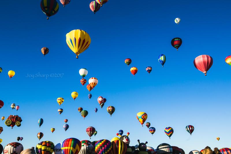 Balloon_Fiesta_Albuquerque-1