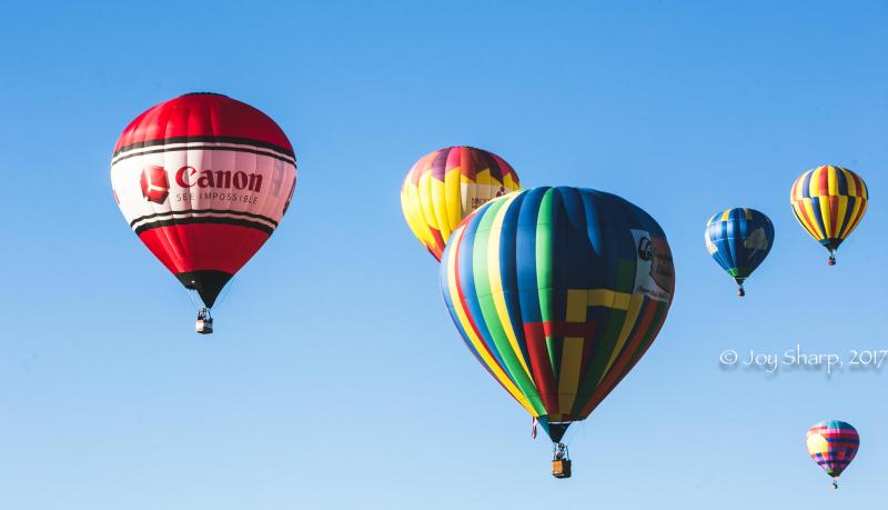 Balloon Fiesta New Mexico Albuquerque-1-8