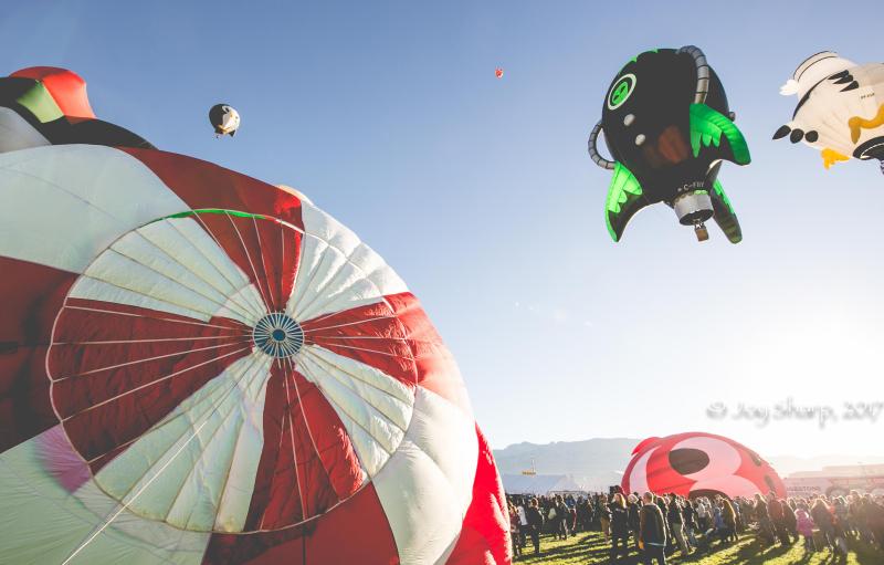 Balloon Fiesta New Mexico Albuquerque-1-5